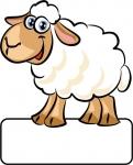 Schaf - Geburtstafel